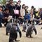 長崎では海辺でペンギンを見るべし~地元の人頼りの旅 in 長崎市~